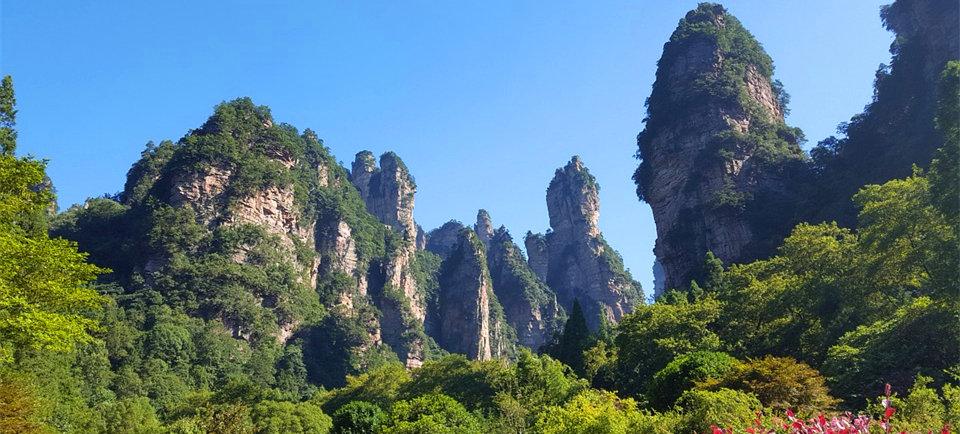 湖南省中青旅国际旅行社 ★★★★★五星旅行社